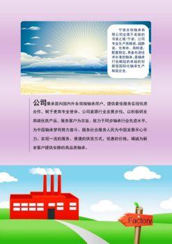 宁波合佳轴承有限公司简介电子画册
