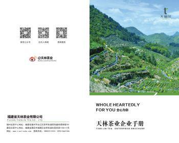 天林茶企业画册