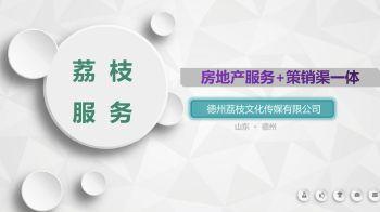 20200319_荔枝文化传媒有限公司简介电子画册