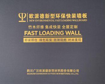 欧派德新型环保快装墙板宣传画册