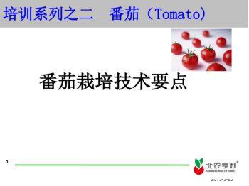 培训系列之 番茄电子宣传册