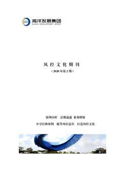风控文化期刊(2020-2)
