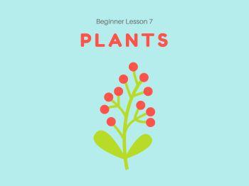 Beginner Lesson 7_ Plants