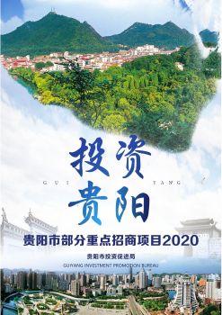 2020年贵州省贵阳市招商引资推介项目 电子书制作软件
