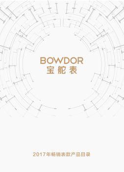 2017年宝舵表经销商订货手册