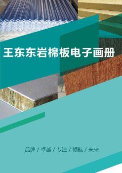 临沂王东东岩棉板厂电子书