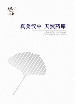 中药材画册中文版 电子书制作平台