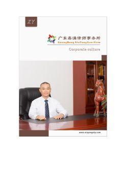广东鑫涌律师事务所《企业画册》