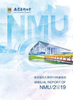 2019年度报告 电子书制作软件