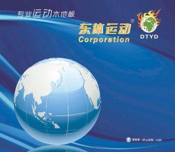 抚顺东体运动木制地板厂电子宣传册