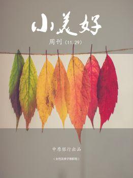 小美好周刊11.29