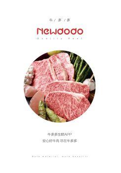 newdodo产品画册