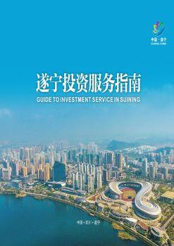 遂宁投资服务指南电子杂志