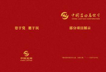 中国蓝田总公司 部分项目展示 已压缩电子画册