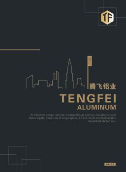 腾飞铝业---天安嘉源承印宣传画册