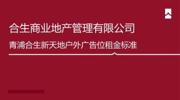 2020合生新天地户外广告位租金标准0525电子画册