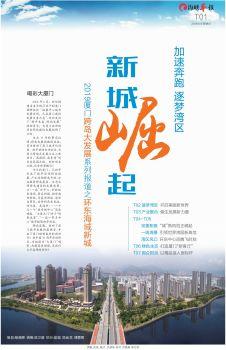 大厦门系列|新城崛起 环东海域电子画册