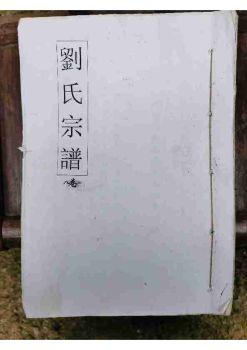 可大湖刘氏宗谱(湖南耒阳彭城堂  第八卷)上册电子书