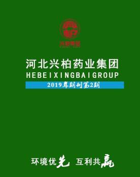 2019年河北兴柏药业集团期刊第2期