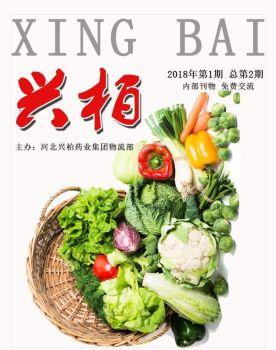 河北兴柏药业集团期刊 第1期,电子书免费制作 免费阅读
