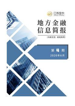 地方金融信息简报(第4期),在线电子杂志,期刊,报刊