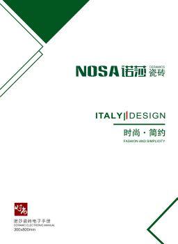 诺莎300x800宣传画册