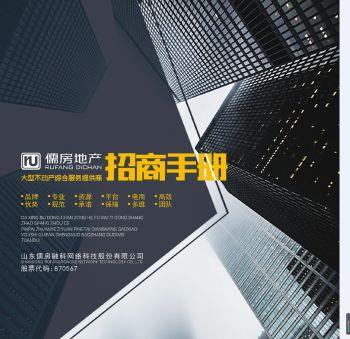 儒房地产招商手册