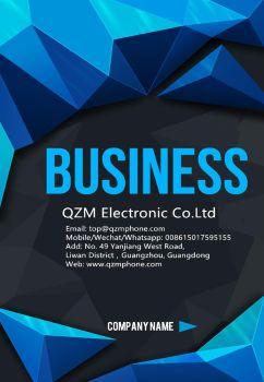 QZM Company Profile PDF