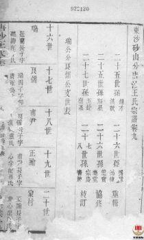 唐沙王氏宗谱_ 十二卷:[江阴]第10册电子书