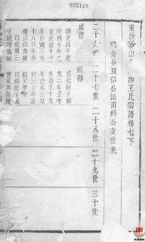唐沙王氏宗谱_ 十二卷:[江阴]第8册电子书