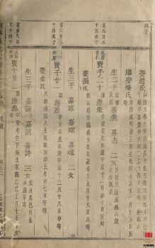 东阳南岑吴氏宗谱-第3册电子刊物