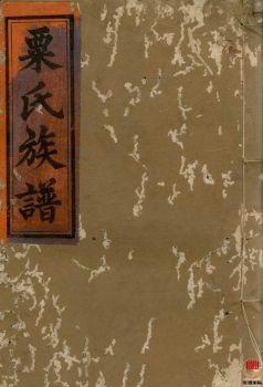 粟氏续修族谱_ 十六卷,首一卷:[湖南邵阳]第9册电子书
