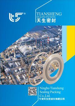 宁波天生密封件有限公司 电子杂志制作软件