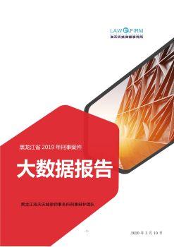 黑龙江省2019年刑事案件大数据报告  | 海天庆城律师电子杂志