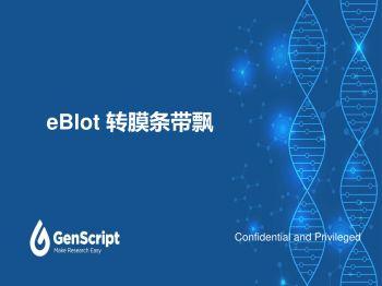 eBlot 转膜条带飘电子宣传册