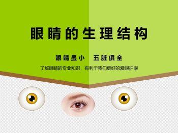 眼睛的生理结构 电子书制作软件