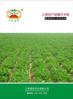 江苏富田小麦田产品展示手册 电子书制作软件