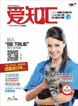 爱之汇杂志二期行业版 电子杂志制作平台