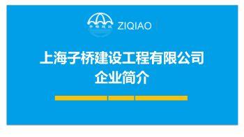 上海子桥建设企业简介