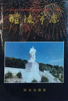 《醴陵市志》1995版-中 电子杂志制作软件