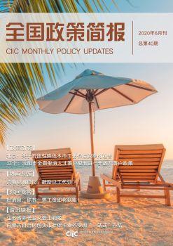 全国政策简报(2020年06月刊) 电子书制作软件
