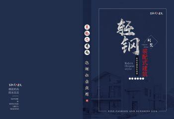 2020轻钢别墅图册100套户型效果图