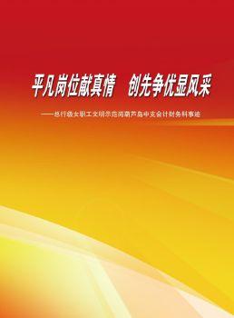 中国人民银行葫芦岛市中心支行会计财务科宣传画册