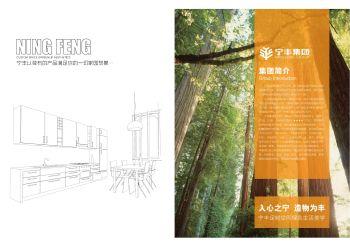 宁丰集团画册 电子书制作平台
