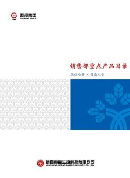 国邦集团重点产品目录电子画册