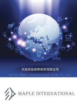 大连枫色国际产品介绍 电子杂志制作软件