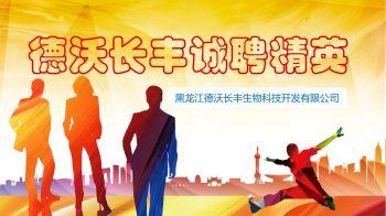德沃长丰招聘PPT 电子杂志制作平台