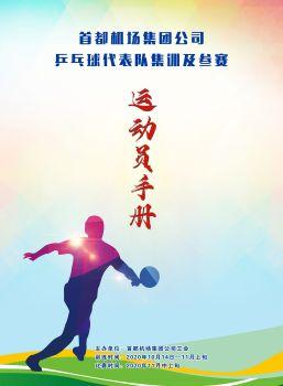 乒乓球训练秩序册 - 副本电子书