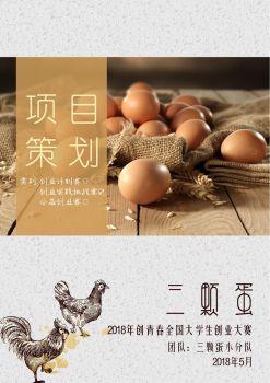 四川三颗蛋农业发展有限公司策划书-2018创青春比赛 电子书制作平台