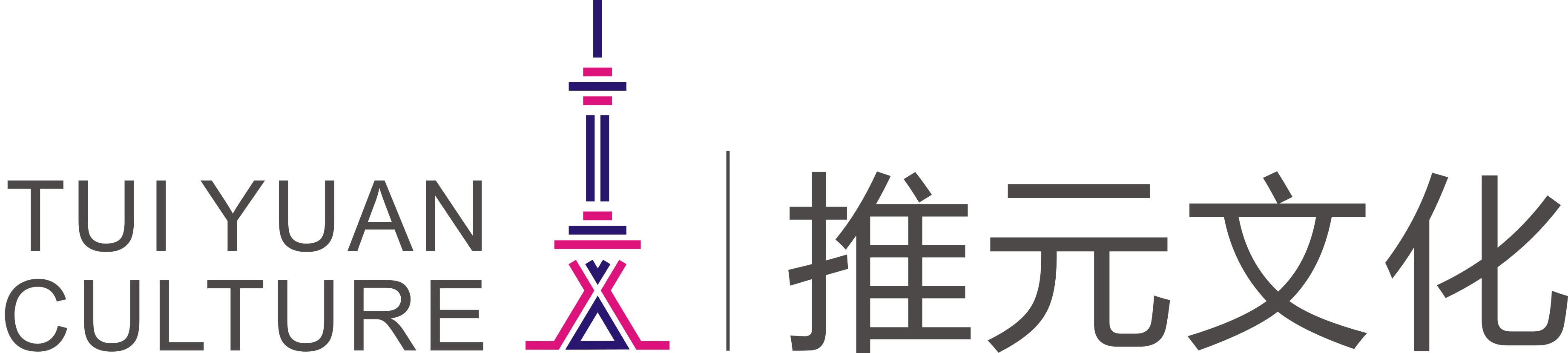 推元文化 电子书制作软件